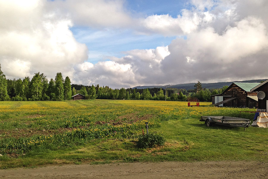 Foto Karlsnäsets Fiskecamp