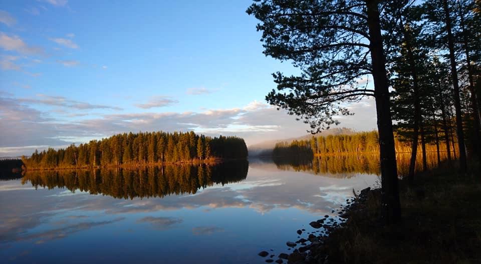Foto Rörströmsälvens Natur & Fiske Upplevelse