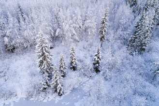 Karl Adami - Winter III
