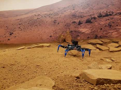 Zee, the hexapod robot | CSIRO Robotics and Autonomous Systems Group