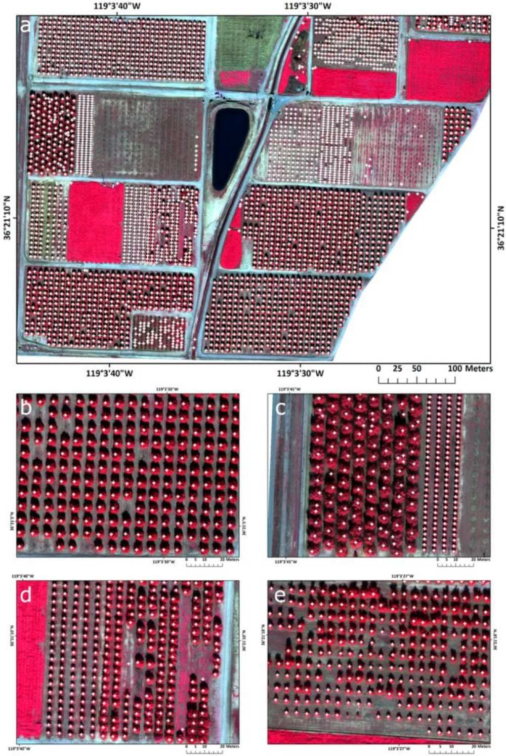 Final tree detection from the test area with white crosses indicating the location of trees: (a) the southern portion of LREC; (b) medium size trees correctly classified; (c) large canopy trees with reduced effect of multiple crown detection, after the object-based refinement; (d) similar sized trees were correctly classified; and (e) heterogeneous tree canopies sizes were correctly classified