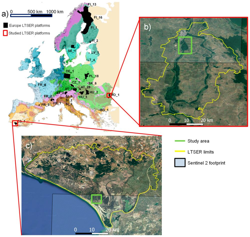 Location of the 28 LTSER platforms in Europe on top of biogeographical regions (modified from Mirtl et al. [9]). Many more have been created in other LTER regional networks [20]. (b) Zoom in at Braila Island LTSER platform limits (yellow line) and the study area where we carried out the UAV flight (green square). (c) Zoom in at Doñana LTSER platform limits (yellow line) and the study area (red line).