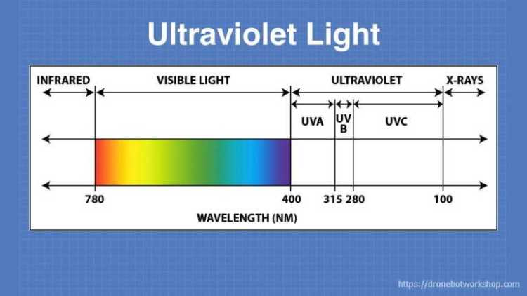 UV Light Spectrum
