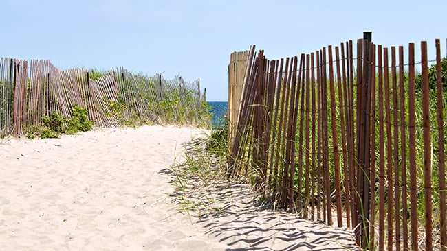 wooden fences define path through sand dune