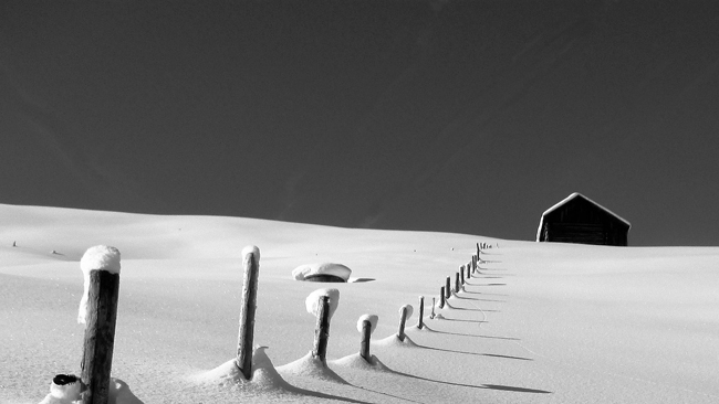 Fence line buried in snow drift courtesy Pixabay