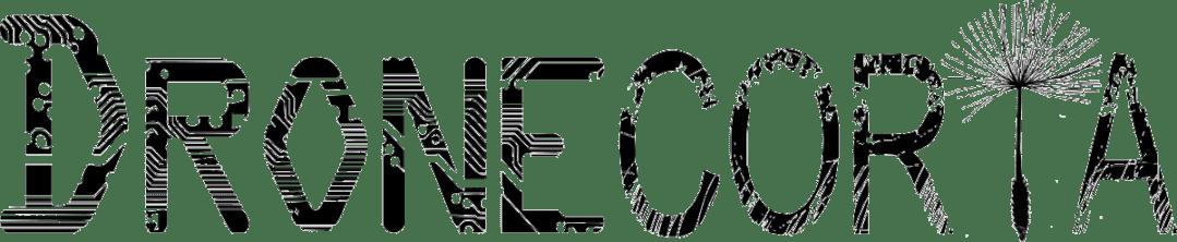 logo dronecoria inicial