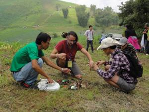 thailand reforestation