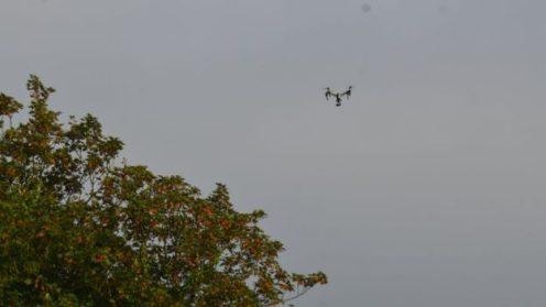 DroneDJ DJI Inspire Hornets attack 1