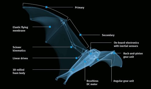 Meet Festo's semi-autonomous Bionic Flying Fox with a wingspan of more than 7 feet 0000