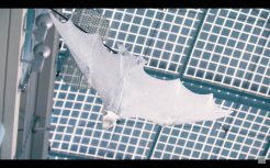 Meet Festo's semi-autonomous Bionic Flying Fox with a wingspan of more than 7 feet 0020