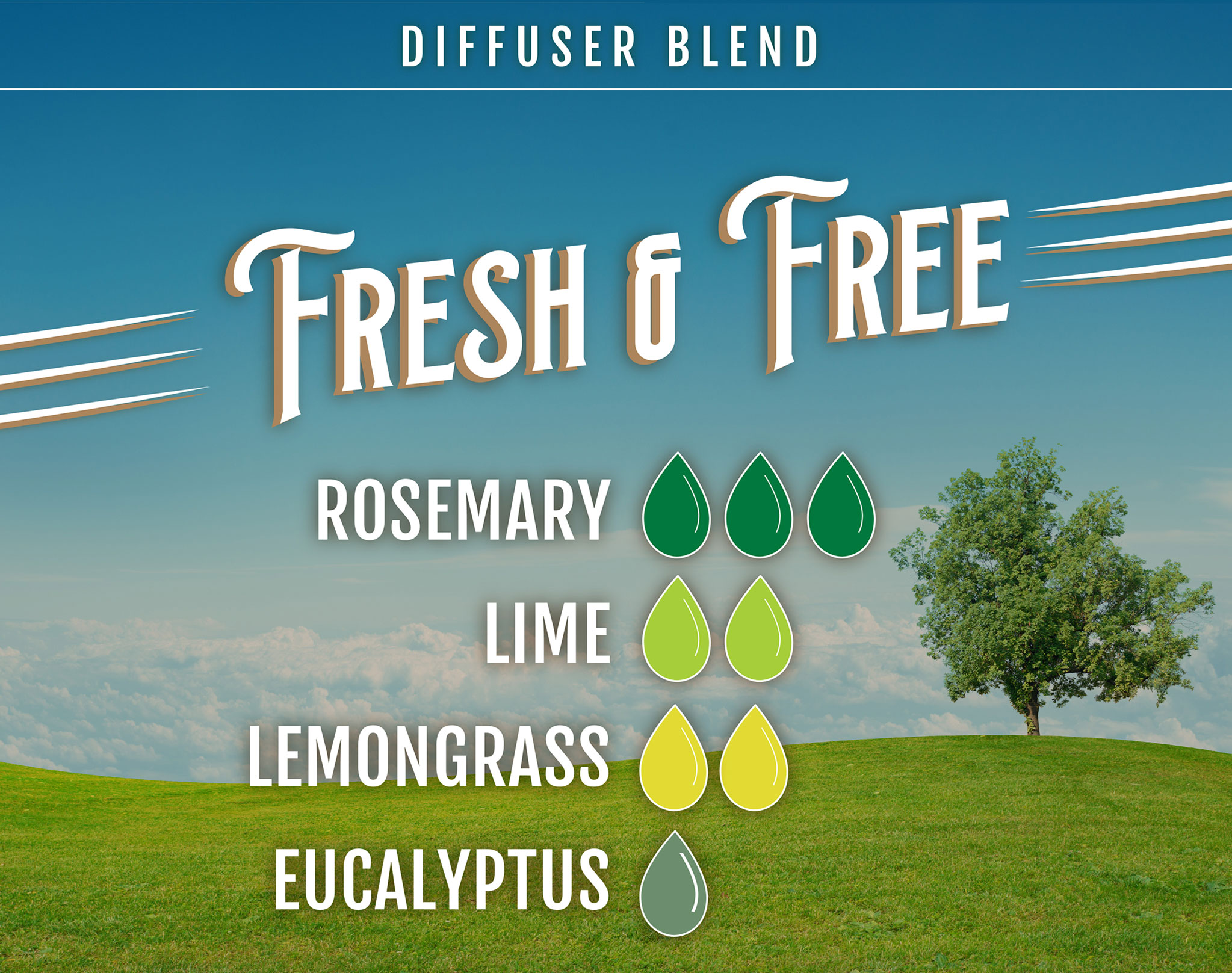 Fresh and Free Rosemary Essential Oil Diffuser Blend - 3 drops of rosemary, 2 drops of lime, 2 drops of lemongrass, 1 drop of eucalyptus