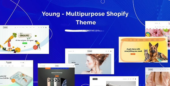 Good looking shopify theme