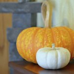 Simply Awesome Fall Décor = Pumpkins