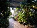 Roma Street Gardens