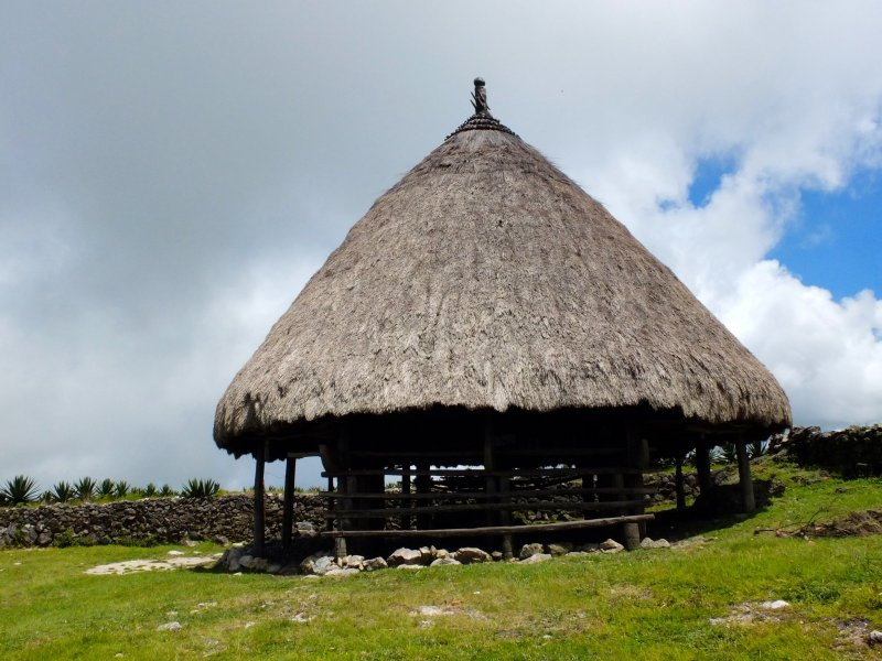 Up-close with an Uma Lurik. The wooden square house is hardly visible under the cone roof. The four horizontal logs are steps leading up to the house.