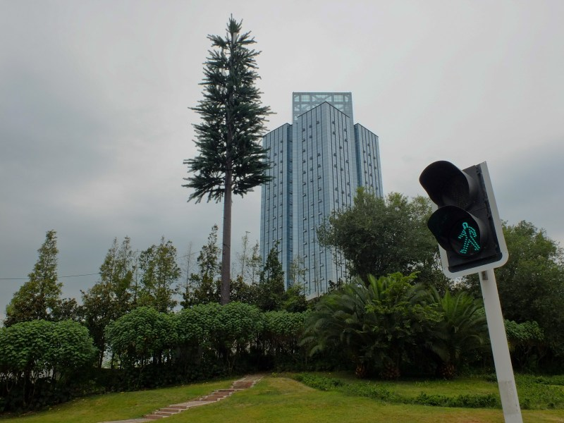 Chengdu, Sichuan Province: China seems to be making efforts to green its city streets. Here, you see a telephone tower disguised as a pine tree.