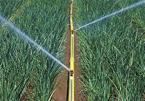above-ground-irrigation