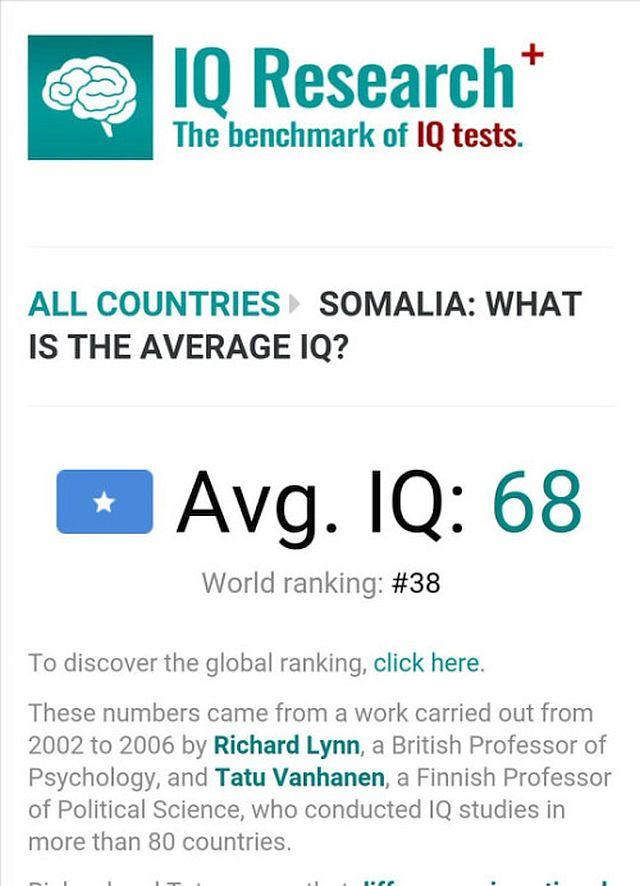iq-research-somalians