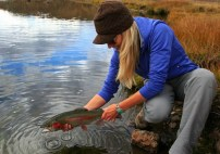 Rebekka Redd Rainbow Trout