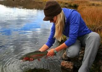 Rebekka Redd Rainbow Trout