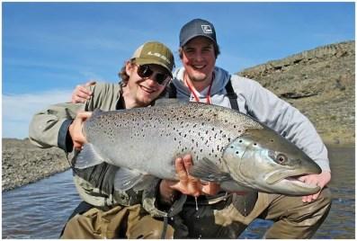 Large sea trout