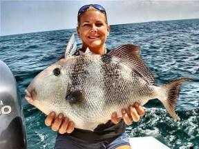 trigger fish record usa