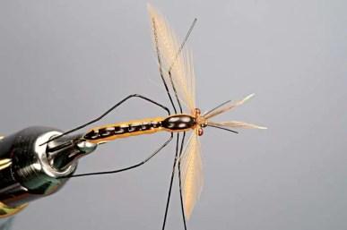 Best daddy long legs fly pattern