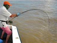 ken-dawes-tarpon-fishing-in-costa-rica