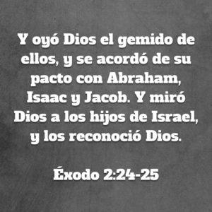 Exodo 2.24-25