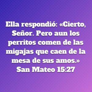 Mateo 15.27
