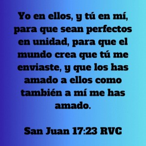 Juan 17.23