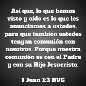 1 Juan 1.3