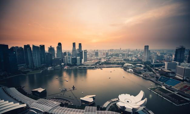 The Singapore SOlution? Controlling the COVID-19 Pandemic