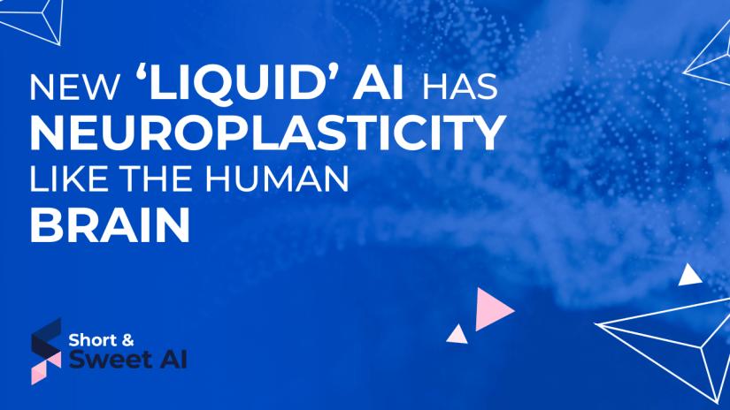 New 'Liquid' AI Has Neuroplasticity Like the Human Brain