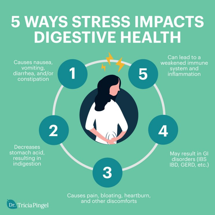5 Ways Stress Impacts Digestive Health - Dr. Pingel