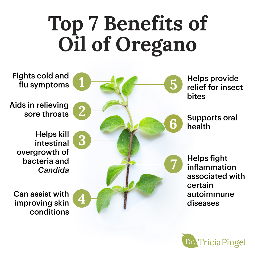 Health benefits of oregano oil - Dr. Pingel