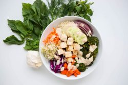Vegan buddha bowl - Dr. Pingel