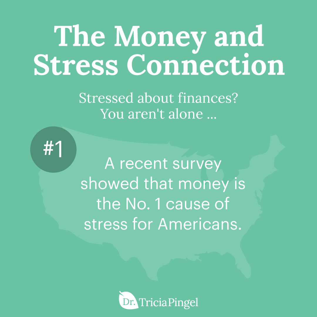 Handling financial stress - Dr. Pingel