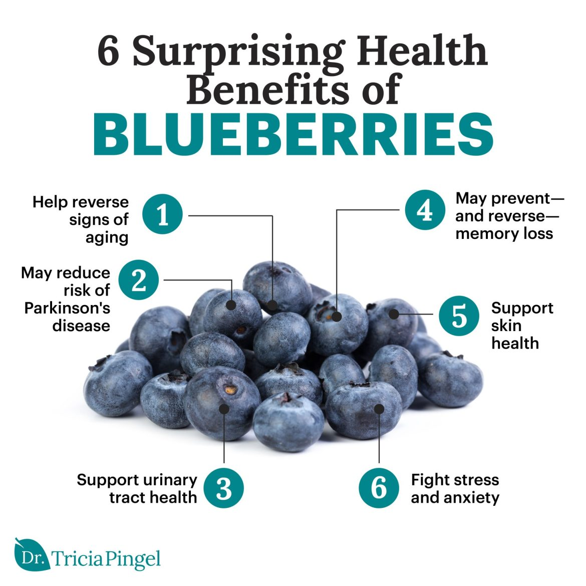 Health benefits of blueberries - Dr. Pingel