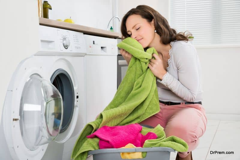 Laundry sanitizer