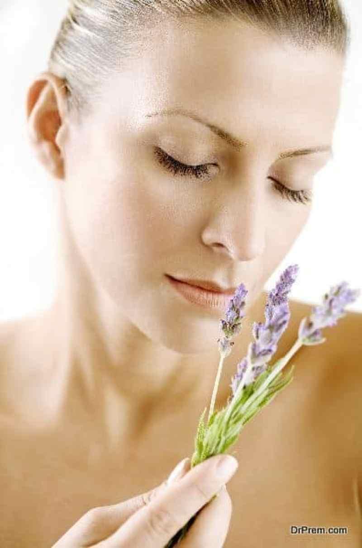 Having-Lavender-Plant