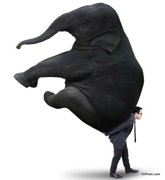 Young asian manager carrying a big elephant in the studio, isolated on white background