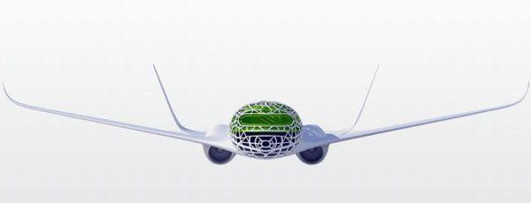 air bus  (2)