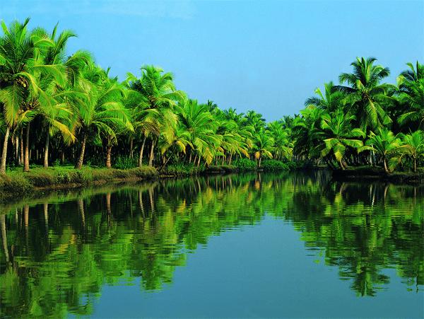 kerala-backwater-pacakge