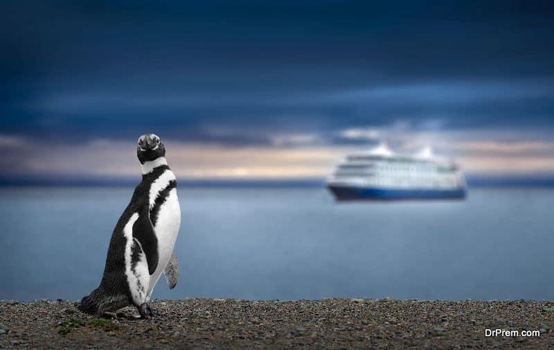 Antarctica-trip