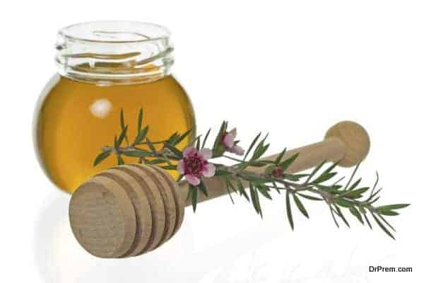 Jar of honey with dipper and manuka or New Zealand tea tree flower (Leptospermum)