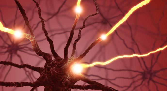 Cirugía de la Epilepsia1