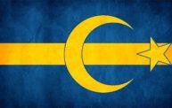 Afbeeldingsresultaat voor swedish flag islam