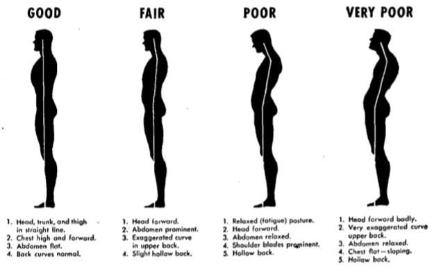 Image result for correct posture