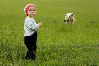 Hill Chiropractic_Mothers Milk Blog_Baby Cow